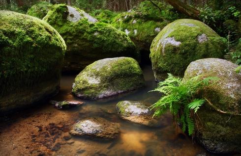 Felsen, Wasser, Bach