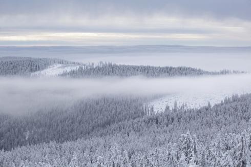 kubany boubin zimni winter aussicht böhmerwald sumava