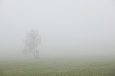 Nebelstimmung november Nebel Hochsitz