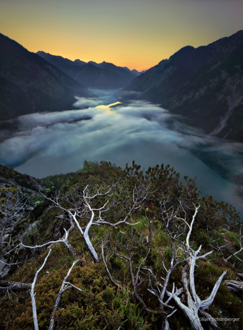 Alpen Landschaftsfotografie Wurzeln Aussicht