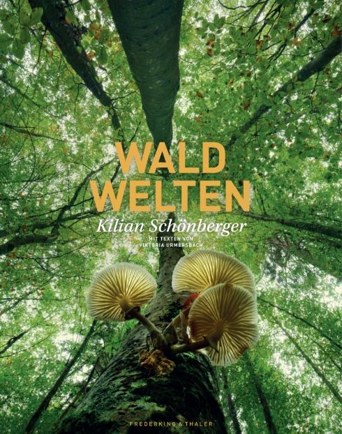 16229_FT_Waldwelten_170712.indd